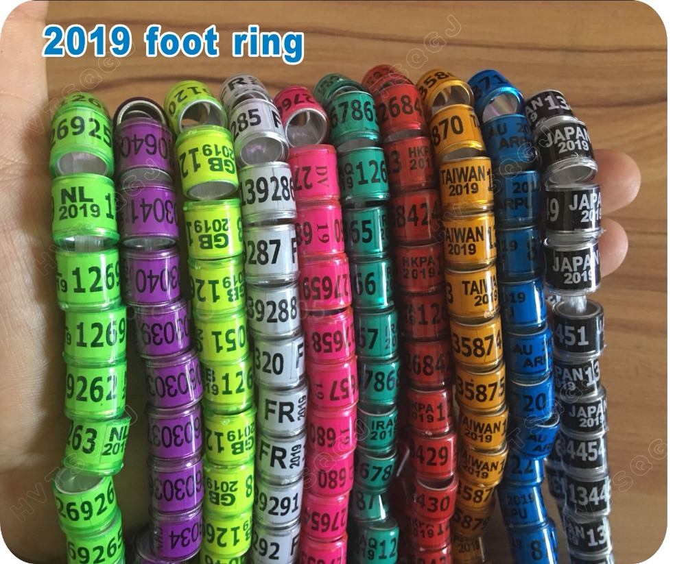 2019 Pigeon Leg Rings Identify Dove Bands 8mm Plastic With Al Gb Rings Pigeon Training Supplies Aluminium Rings For Pigeons Iot Devices