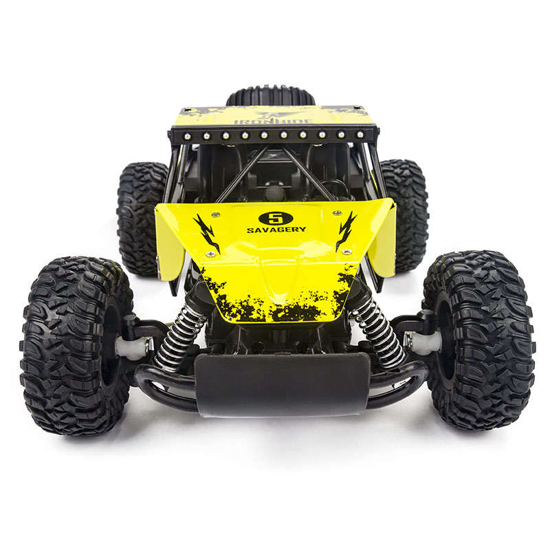 WLtoys-RC-Car-116-High-Speed-Rock-Rover-Toy-Remote-Control-Radio-Controlled-Machine-Off-Road-Vehicle-Toy-RC-Racing-Car-for-Kid-2