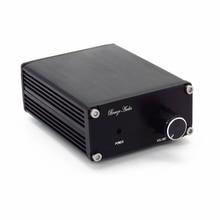 DC12V 24V Monoเครื่องขยายเสียงดิจิตอลบอร์ดเสียงTPA3116 100W Power Audio Amp 1.0 Classรถซับวูฟเฟอร์Mono Amplifier