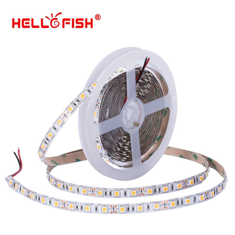 High brightness CRI 5050 led diode strip light DC 12 24 V flexible light stripe 5m 60 LED tape lights & lighting Hello Fish