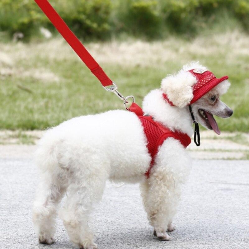 Dog Comfort Vest Harness Leash Mesh Breathable Chihuahua Clothes Plus Size XS/S/M/L/XL