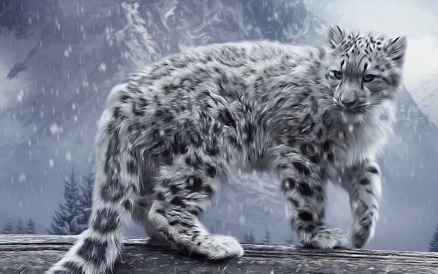 Home Decor HD Print Animal Art Originální malba na plátně Snow Leopard Domácí dekorace Dárky
