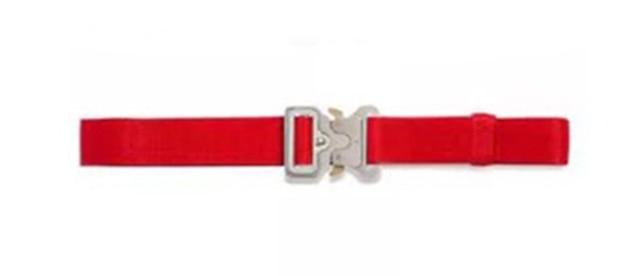 Four Types Alyx Belt Roller Coaster Belt Metal Button Unisex Hip Hop Swag Brand Men Women Belt Zmm0369 4 by Lala Ikai