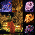 Holiday Party Lighting 10m 100 LED Copper Wire LED String Light Starry Lights+Power Adapter US Plug White/Warm White/Colorful