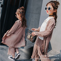 2017 new children's spring girls leisure suit long sleeved shirt + trousers children two piece tide