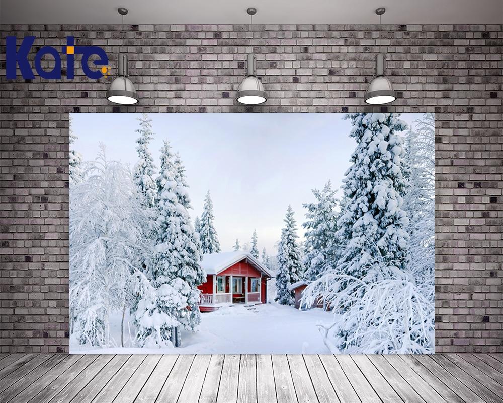 Kate Digital Printing House Under Snow Photography Studio Backdrop Dreamlike Background Kate Background Backdrop our kate