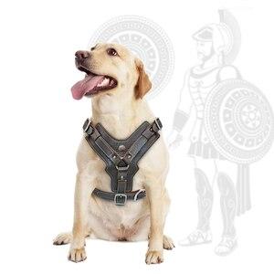 Image 3 - Durevole Cablaggio Del Cane Cani di Grossa taglia Imbracature di Addestramento Dellanimale Domestico del Cuoio Genuino Della Maglia Con Il Controllo Rapido Maniglia Per Il Labrador Pitbull K9