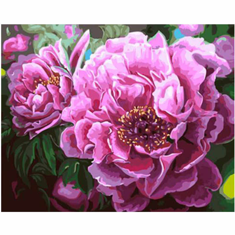 WEEN Pink Peony-DIY Painting By Numbers Kit,Paint On Canvas, Coloring By Numbers, Painting Calligraphy For Home Decor 40x50cm
