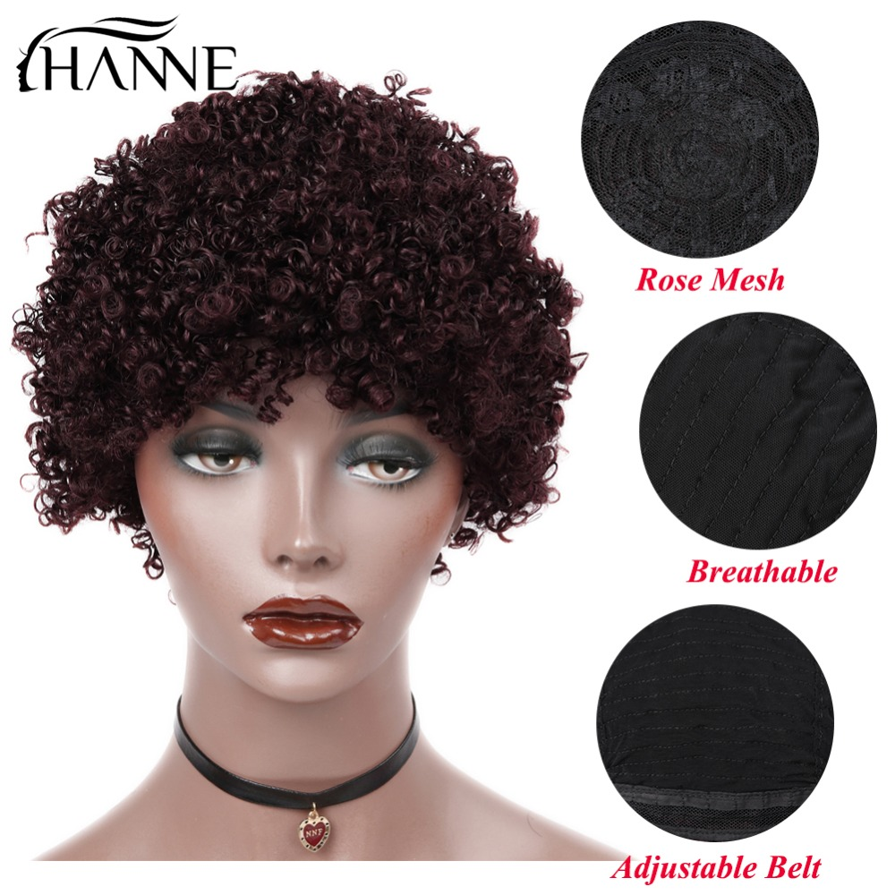 HANNE Hair Human Hair Wig For Black Women Brazilian Remy Hair Afro Kinky Curly Wig 99J Color Free Shipping Free Shipping
