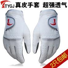 TTYGJ men s font b golf b font ball gloves genuine leather slip resistant gloves Free