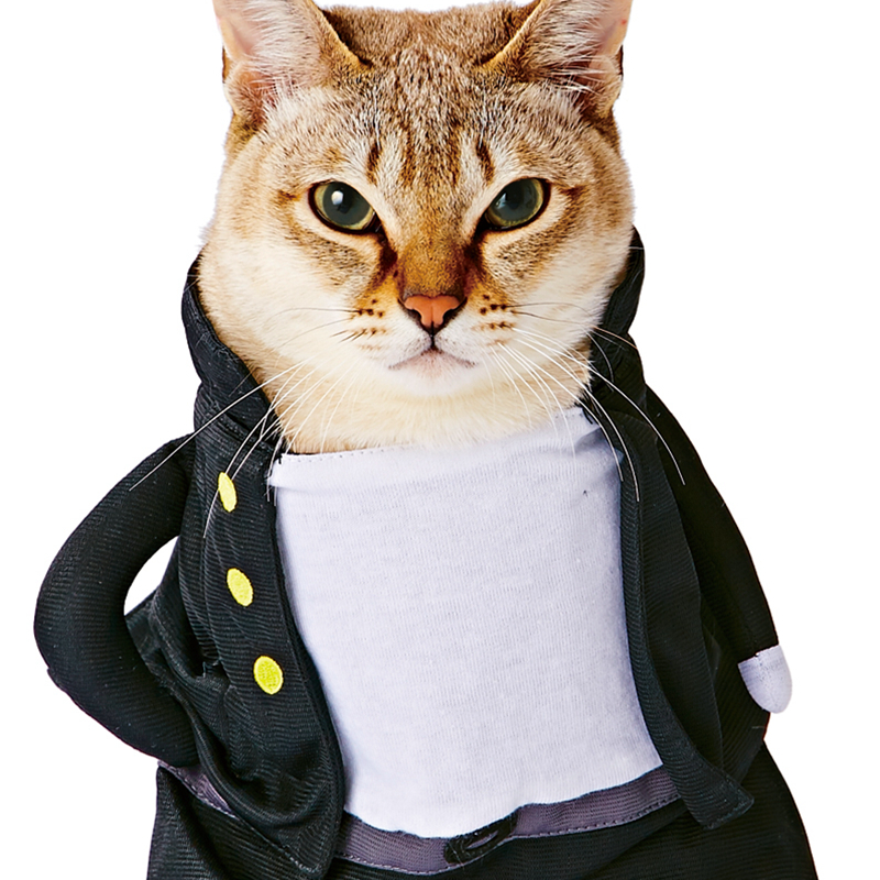 Cat clothes Japanese secret society costume for cats and dogs-in Cat Clothing from Home & Garden
