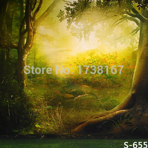200cm*300cm backgrounds newborn props and backdrops flower photography background baby for photo studio S655 300cm 200cm about 10ft 6 5ft backgrounds korean butterfly flower pots wooden plaque notes photography backdrops photo lk 1294