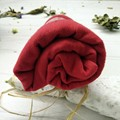 Women Girls Autumn Winter Solid Large Long Cotton Blend Casual Scarf Wraps Shawl V2
