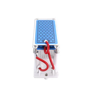 Image 5 - Portable 10g/h Ceramic Ozone Generator Double Integrated Plate Ozonizer Water Air Purifier For Chemical Factory