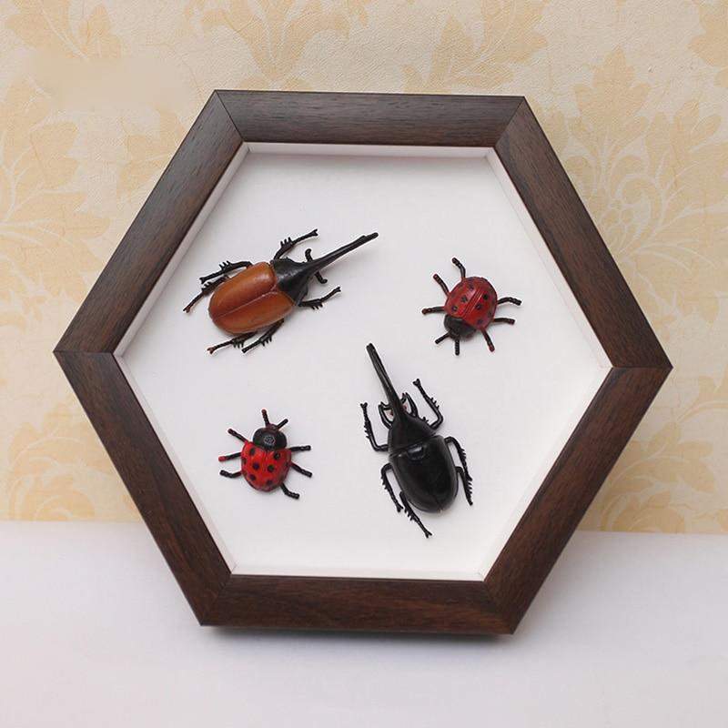 Hexagon Specimen Insect Display Box Photo Frame Footprint Clay Newborn Handmade Artwork Solid Color Frames