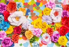 Laeacco Blossom Colorful Flower Rose Love Heart Birthday Party Baby Portrait Photographic Background Photo Backdrop Photo Studio