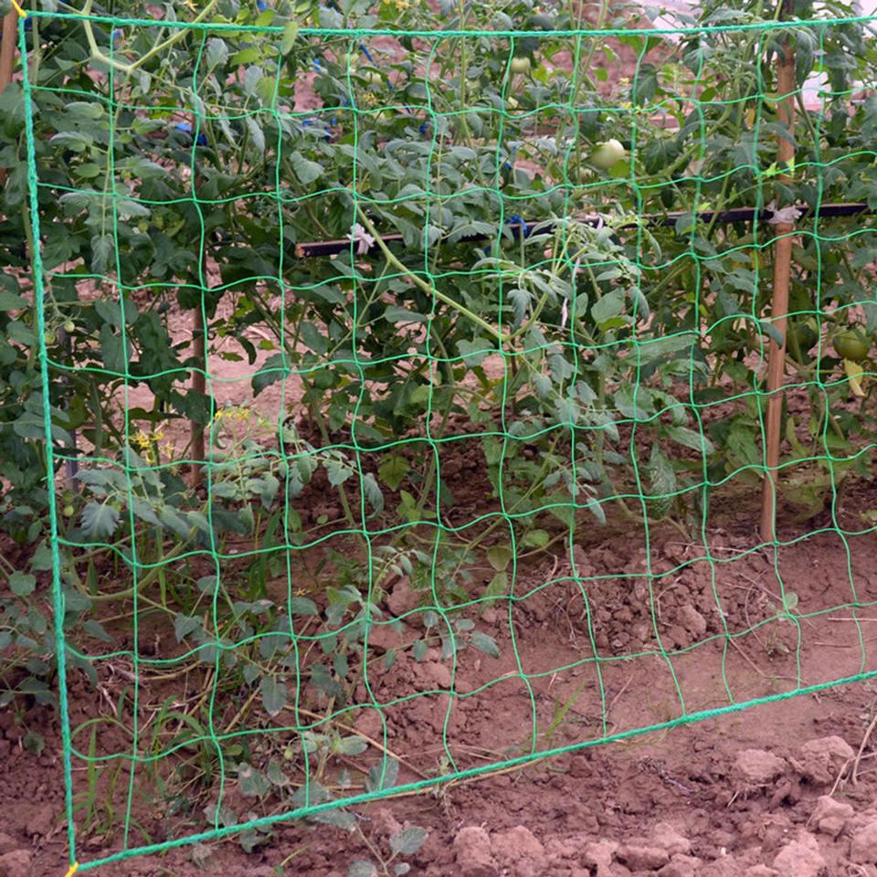 1pc Vegetable Plant Vine Fence Flower Climbing Vine Mesh Plant