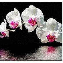 Doppel farbe orchidee 20X30 Großhandel DIY Diamant Malerei Strass Stickerei Hand hochzeitsgeschenk dekoration