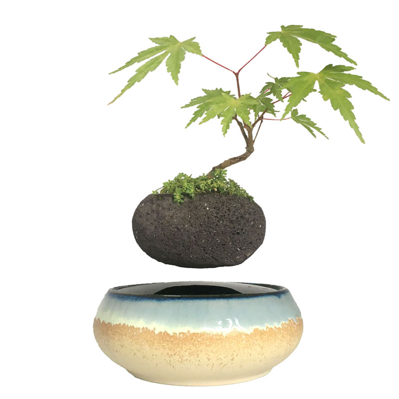 US $99 99 |2018 japan magnetic levitation Floating Flowers Ceramic Planter  Pots Anniversary Gifts for men free shipping (no plant)-in Flower Pots &