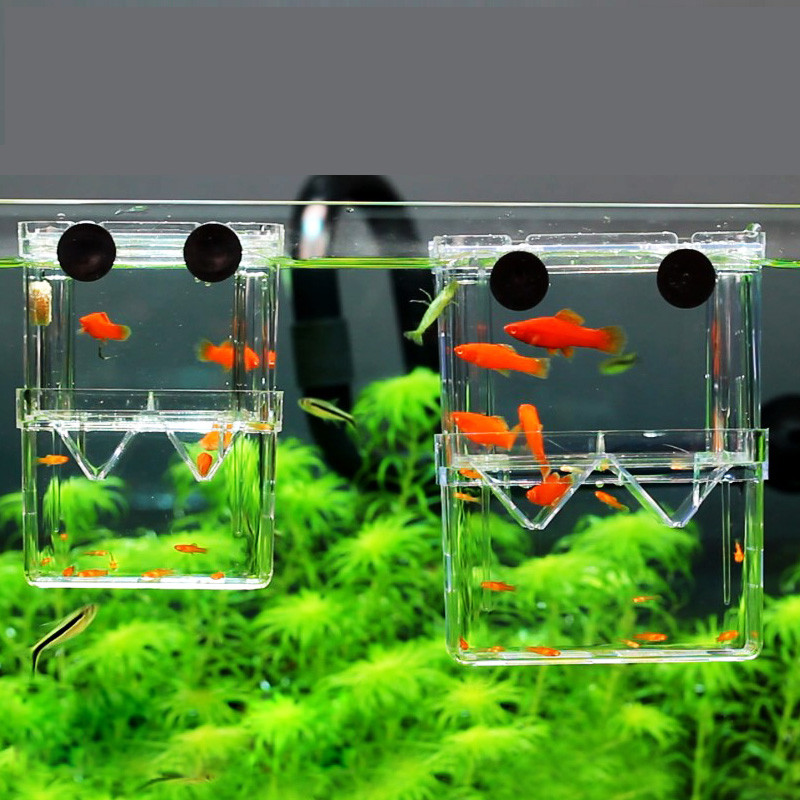 8*7*11cm Double-Deck Clear Fish Breeding Isolation Box Aquarium Breeder Fish Tank Hatching Incubator Fish House Home