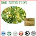 Chinese Dodder Seed Extract, Chinese Dodder Seed P.E., Chinese Dodder Extract  10:1 500g
