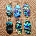 WT-P742 Wholesale AA quality abalone jewerly natural abalone shell pendants beautiful colors with gold plated abalone pendants