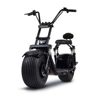 Electric Motorcycle Electric Scooter Lithium Battery Adult 1000w Removable Battery Intelligent GPS Black Red