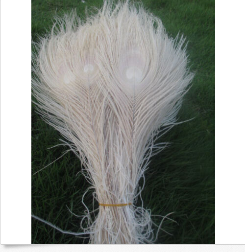 Wholesale 50pcs Featured Quality Natural Peacock Feather Eye 25-30cm/10-12inch Diy Hot Scarce  Decorative Beige