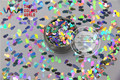 TCA100 Solvent Resistant holographic silver Color  Penguin shape Glitter 5.0MM Size Glitter for nail Art nail gel makeup