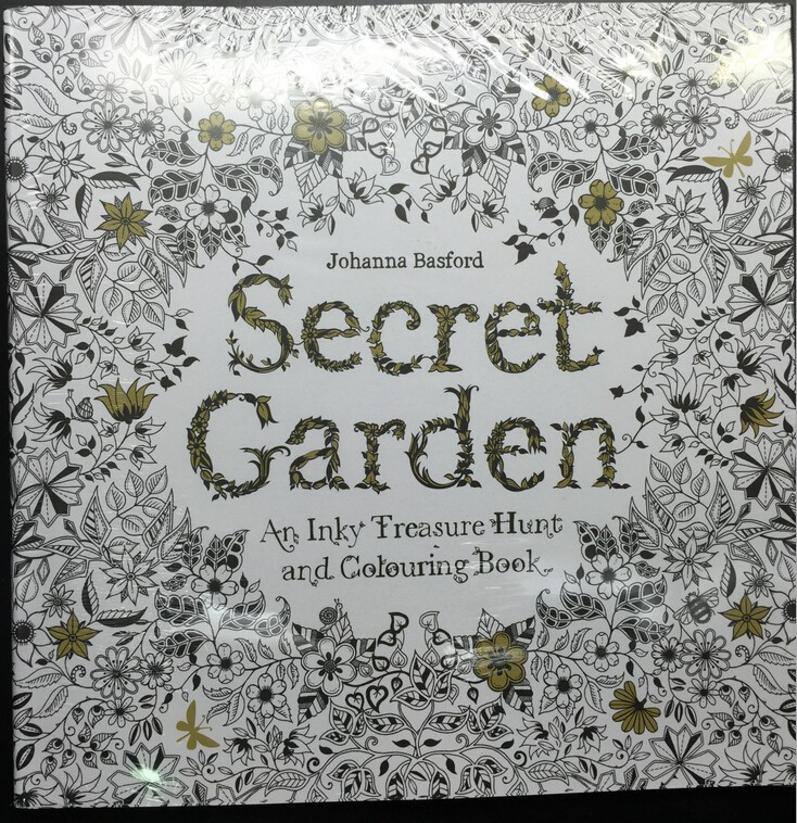 Secret Garden 96 Pages English Edition Coloring Books For Children Adult Relieve Stress Kill Time Graffiti Painting Drawing Book ernest chesneau english painting