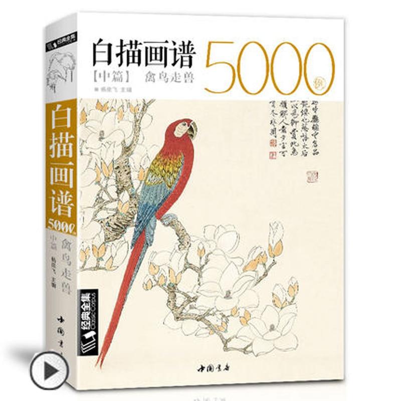 Caixa de desenho branco 5000, pássaros animais chinês mostarda entrada livro clássico linha pintura livro