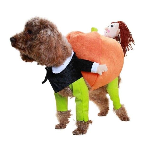 Halloween Pumpkin Costume 3