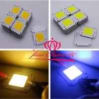 10PCS 50W warm white /white Cool white High Power 12V 32V COB LED Chip Grow light