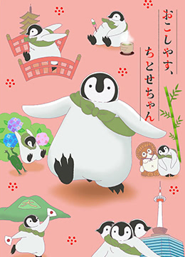 《欢迎光临千岁酱》2018年日本儿童,动画动漫在线观看