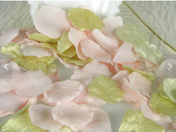 1000 rose petals gold and blush pink bulk flower petals 1000 rose petals gold and blush pink bulk flower petals artificial petals pink blush gold first birthday in artificial dried flowers from home mightylinksfo