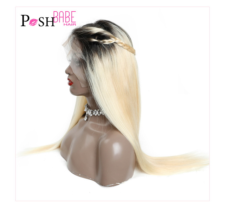 Ombre Lace Front Wigs (16)