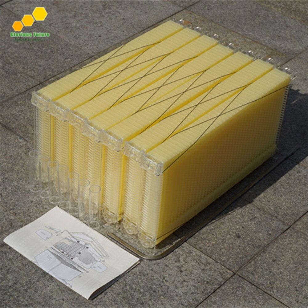 Kunststoff bienenstöcke honig fluss bee hive rahmen aus China ...