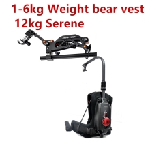 EASYRIG video Serene camera easy rig for dslr DJI Ronin M Crane 2 Crane Plus 3 AXIS gimbal stabilizer with flowcine serene цена