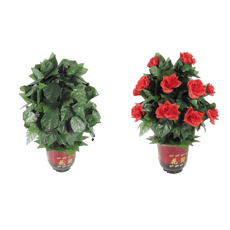 Blooming Rose Bush (20 Flores, Control remoto, batería versión) trucos de magia flor apareciendo etapa apoyos de la boda del partido divertido