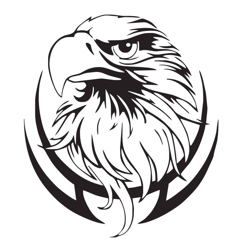 eagle stickers for wall decoration bird of prey wall stickers home Bird of Prey Landing eagle stickers for wall decoration bird of prey wall stickers home decor vinyl art wall decals in wall stickers from home garden on aliexpress