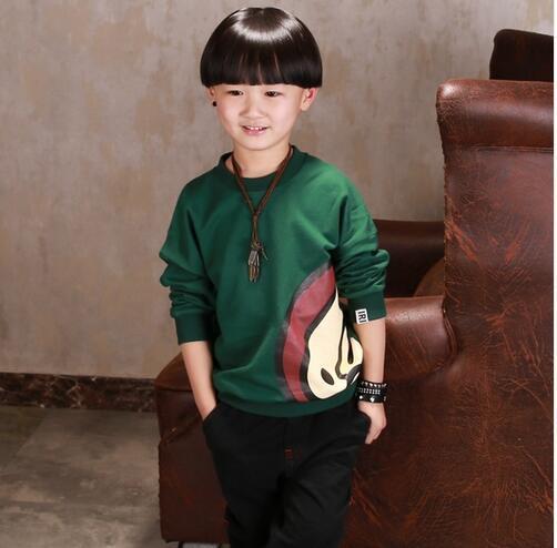 2017 Children New Fashion clothing Spring boys Long Sleeve Brand Sweatshirts for children cotton Green Purple kids casual tops