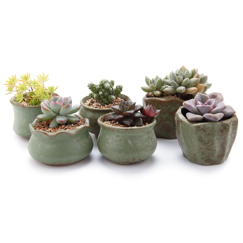 Ceramic Retro Spring Round Stumps Succulent Cactus Plant Pots Flower Pots Planters Containers Window Boxes Garden Decoration