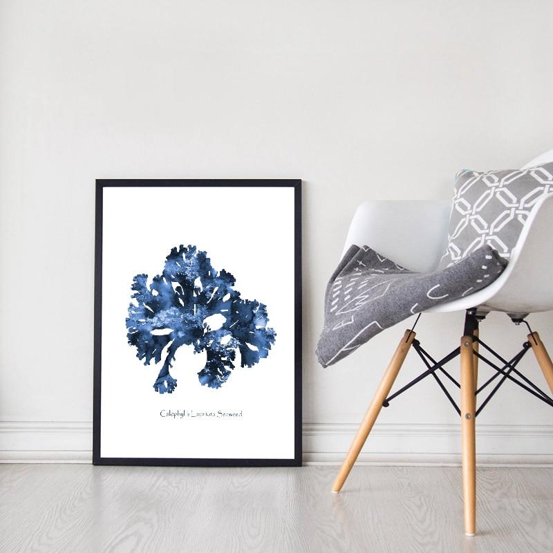 Sea Coral Prints