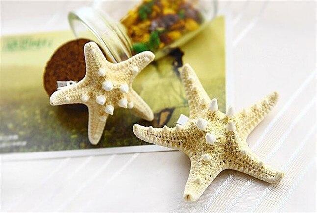 sea star размер