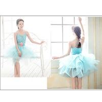 Gratis Verzending Blue Ballet Tutu Jurken voor Volwassen Kinderen Glitter Top Bloem Riem Puffy Rok, Ballet Kostuum Dansen Dancewear HB582
