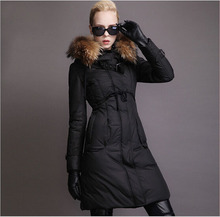 High Quality Nice New Brand Winter Duck down parka Luxury Real Raccoon Fur Jackets Women Fashion