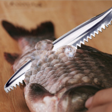 Stainless Steel Fish Skin Remover Knife Scraper Scale Coconut
