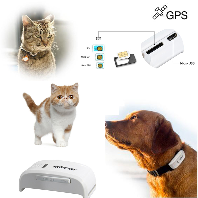 2015 Latest Small Portable Pets Dog GPS Tracker Device With Free Collar tk909 Tracking On Moboile