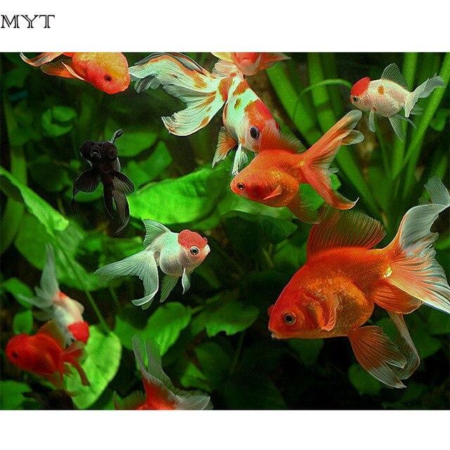 Petit bricolage maison toutes mes ides de bricolage de for Petit poisson rouge