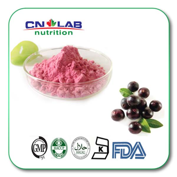 GMP factory supply natural acai berry extract powder 500g